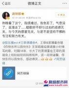 龚琳娜评价王菲微博原